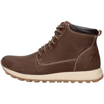 Sapatos Homem Botas baixas Docksteps PF2118DSE005DSE Castanho