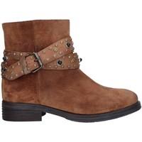 Sapatos Mulher Botins Zoe 0050 Castanho