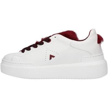 Sapatos Mulher Sapatilhas Ed Parrish LALDMA11 Branco