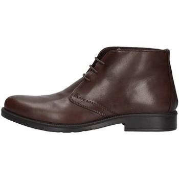 Sapatos Homem Botas baixas Enval 2220211 Castanho