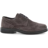 Sapatos Criança Sapatos IgI&CO 6657600 Cinza