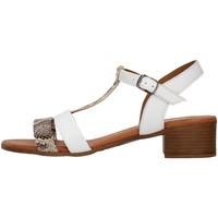Sapatos Mulher Sandálias Melluso 018826A Branco