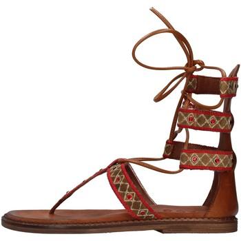 Sapatos Mulher Sandálias Zoe INCAS05 Castanho