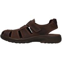 Sapatos Homem Sandálias Enval 7219111 Castanho