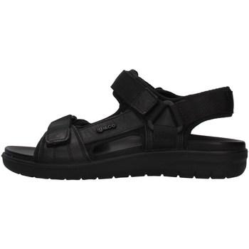 Sapatos Homem Sandálias IgI&CO 7131000 Preto