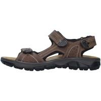 Sapatos Homem Sandálias desportivas IgI&CO 7130022 Bege