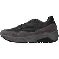 Sapatos Homem Sapatilhas IgI&CO 6142422 Cinza