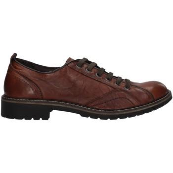 Sapatos Homem Sapatos IgI&CO 6108311 Castanho