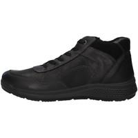 Sapatos Homem Sapatilhas de cano-alto Enval 6223200 Preto