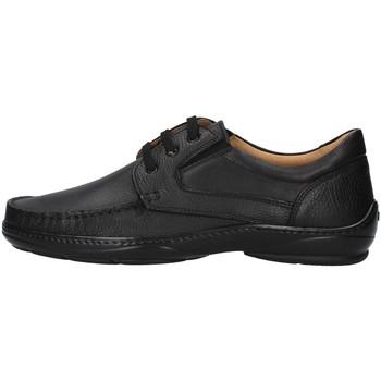 Sapatos Homem Sapatos Melluso U47038L Preto