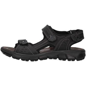 Sapatos Homem Sandálias desportivas IgI&CO 5147800 Preto