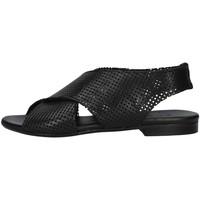 Sapatos Mulher Sandálias Zoe DAFFY064 Preto