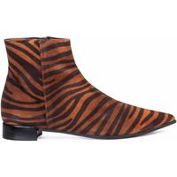 Sapatos Mulher Botins Paco Gil NACHA Castanho