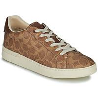 Sapatos Mulher Sapatilhas Coach LOWLINE Castanho