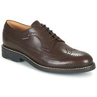 Sapatos Homem Sapatos Pellet NORMAN Castanho