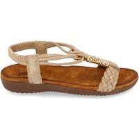 Sapatos Mulher Sandálias Clowse VR1-261 Kaki