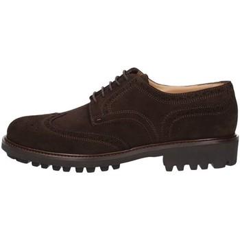 Sapatos Homem Sapatos Triver Flight 214-03B Castanho