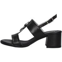 Sapatos Mulher Sandálias NeroGiardini E012264D Preto