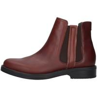 Sapatos Mulher Botins Stonefly 212112 Castanho