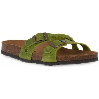 Sapatos Mulher Chinelos Bioline 233 ALOHE INGRASSATO Verde