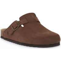 Sapatos Tamancos Bioline 1900 MORO NABOUK Marrone