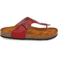 Sapatos Mulher Sandálias Clowse VR1-267 Rojo