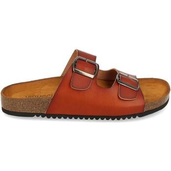 Sapatos Mulher Sandálias Clowse VR1-268 Camel