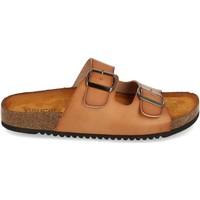 Sapatos Mulher Sandálias Clowse VR1-268 Kaki