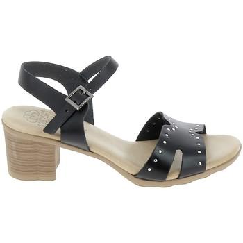 Sapatos Mulher Sandálias Porronet Sandale F12626 Noir Preto