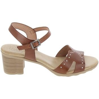 Sapatos Mulher Sandálias Porronet Sandale F12626 Marron Castanho