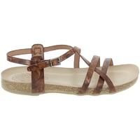 Sapatos Mulher Sandálias Porronet Sandale F12615 Marron Castanho