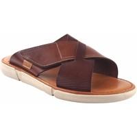 Sapatos Homem Chinelos Vivant Sandália Castanho