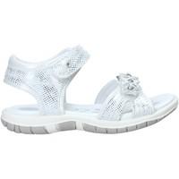Sapatos Rapariga Sandálias Chicco 01065377000000 Branco