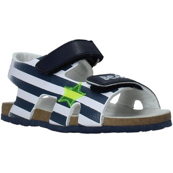 Sapatos Criança Sandálias Chicco 01065374000000 Azul