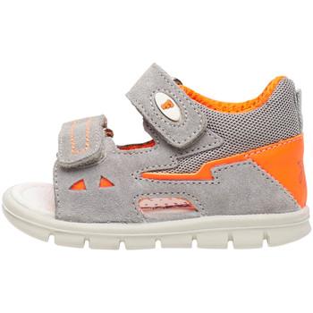 Sapatos Criança Sandálias Falcotto 1500839 02 Cinzento