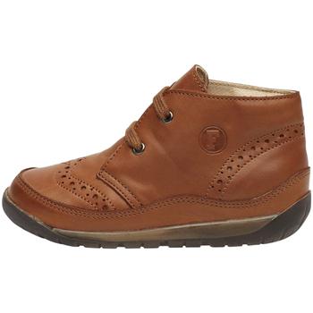 Sapatos Criança Sapatilhas de cano-alto Falcotto 2012798 02 Castanho