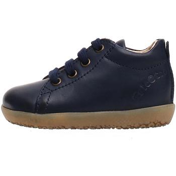 Sapatos Criança Sapatilhas Falcotto 2014581 01 Azul