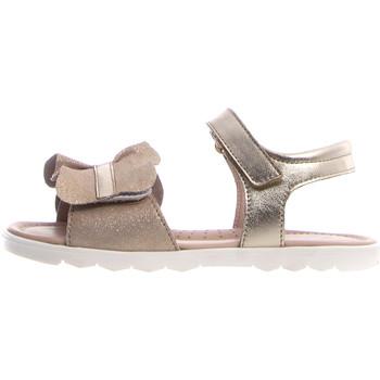 Sapatos Criança Sandálias Naturino 502712 02 Rosa