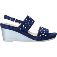 Sapatos Mulher Sandálias Melluso HR70531 Azul