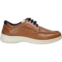 Sapatos Homem Sapatilhas Melluso XU17128 Castanho
