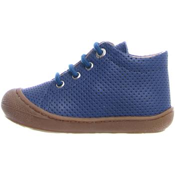 Sapatos Criança Sapatilhas Naturino 2012889 87 Azul