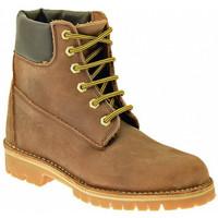 Sapatos Homem Sapatos de caminhada Koloski  Multicolor