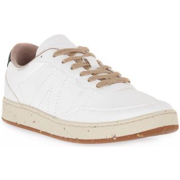 Sapatos Sapatilhas Acbc 200 EVERGREEN Grigio