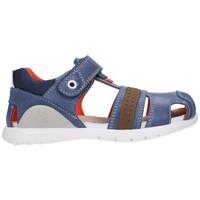 Sapatos Rapaz Sandálias Biomecanics 212188 Niño Gris gris