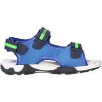 Sapatos Rapaz Sandálias Docksteps - Sandalo blu/verde BOXE3 BLU