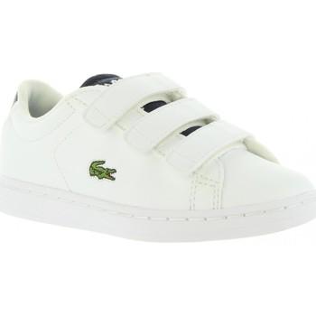 Sapatos Criança Multi-desportos Lacoste 34SPC0001 CARNABY Blanco