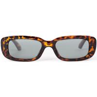 Relógios & jóias Homem óculos de sol Jacker Sunglasses Castanho