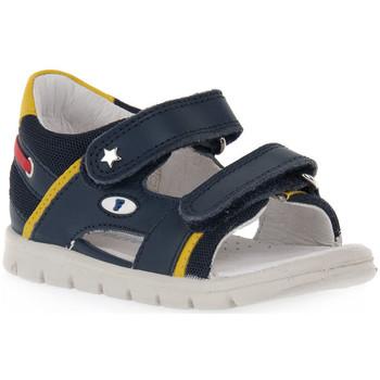 Sapatos Rapariga Sandálias Naturino FALCOTTO 0C02 NEW SAILING Blu