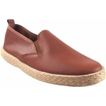 Sapatos Homem Sapatilhas Ne Les Sapato masculino NELES 6903 couro Castanho