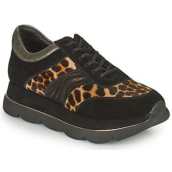 Sapatos Mulher Sapatilhas Café Noir BORDA Preto / Bege / marinho
